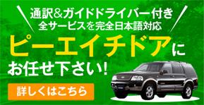 通訳&ガイドドライバー付き 全サービスを完全日本語対応 ピーエイチドアにお任せ下さい!