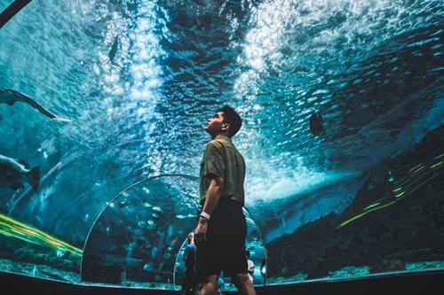 マニラ・オーシャンパークってどんな水族館?